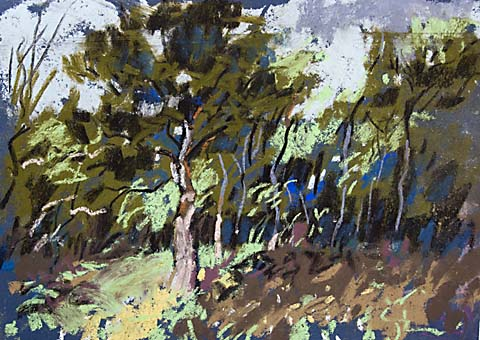 pastel painting in the forest trees